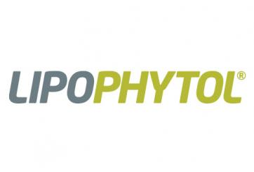 Lipophytol©, an alternative to monacolin K