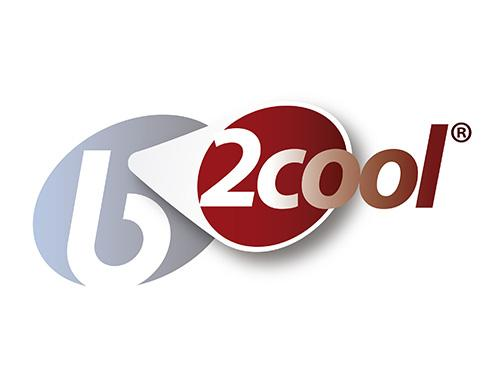 b-2Cool®: an exclusive ingredient for joint health