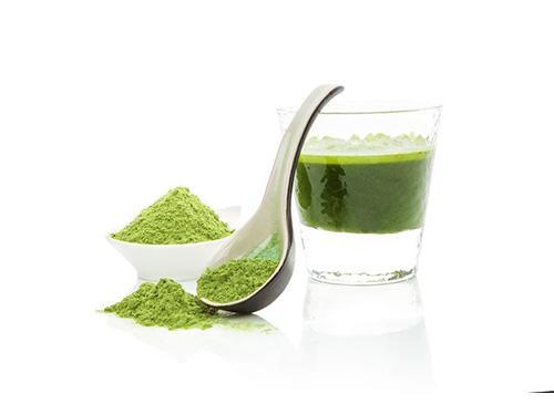 Allma® smooth Chlorella: It has it all !